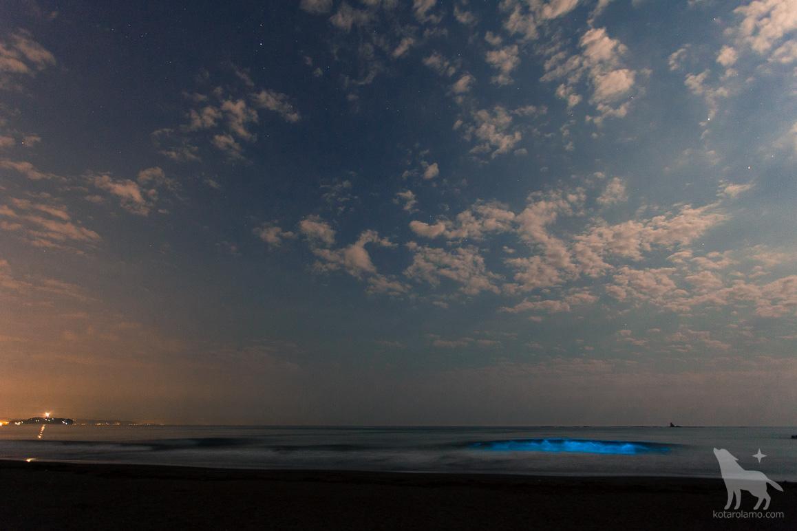 青く光る海 (1)