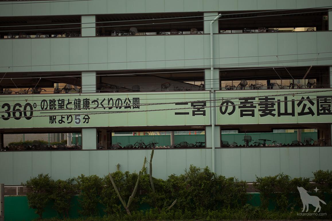 二宮の吾妻山公園