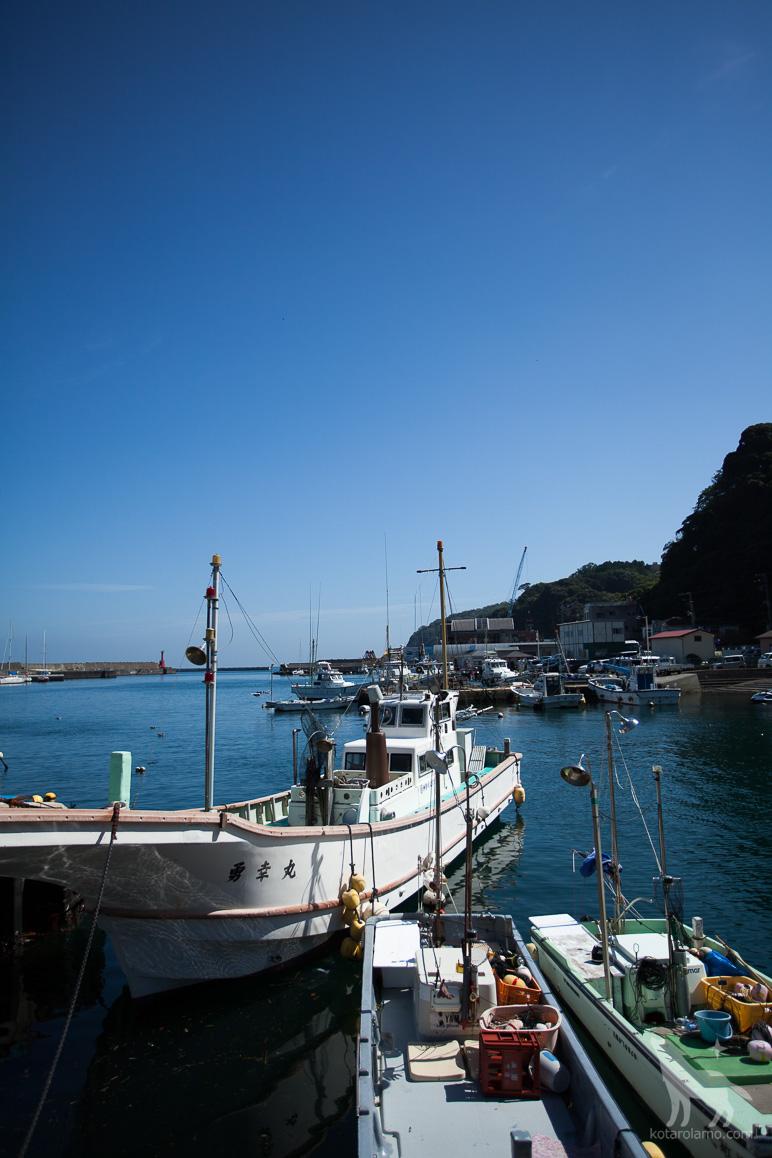 真鶴の漁港