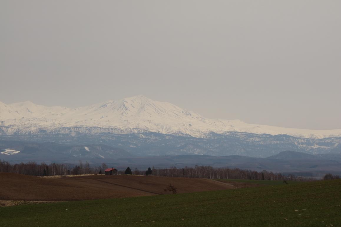 美瑛の丘と山々。曇り。