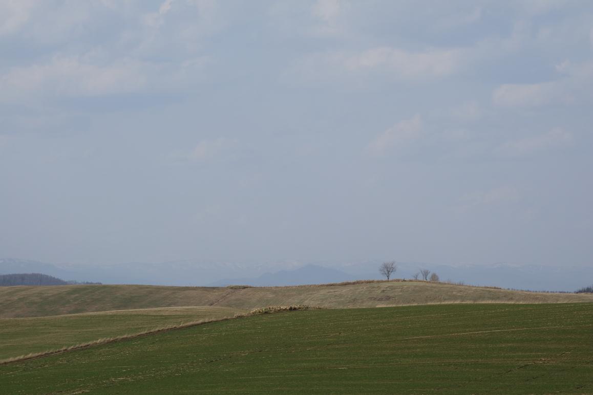美瑛の丘。一瞬の晴れ間。