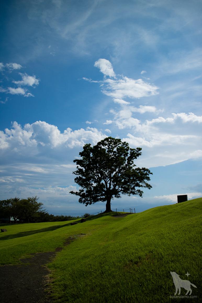 二宮町、吾妻山公園の山頂