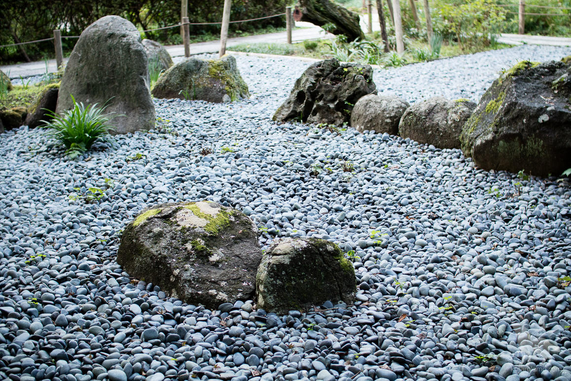 瑞泉寺の庭