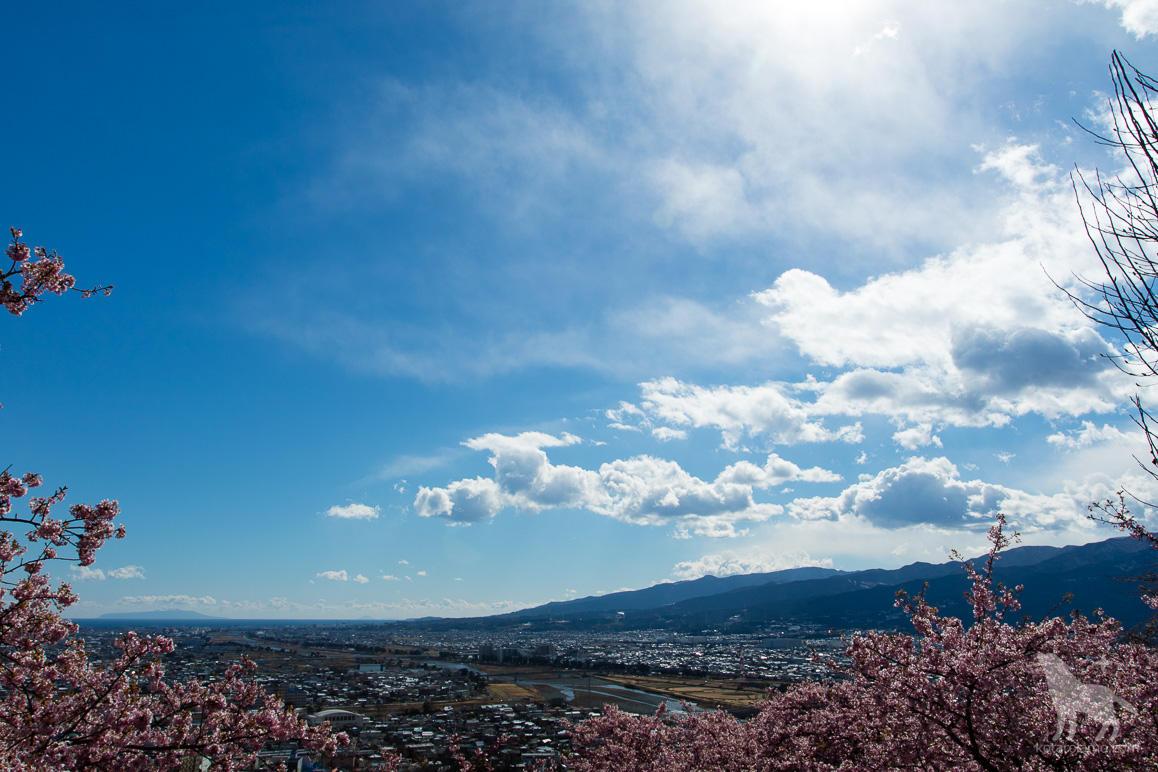西平畑公園からの眺め