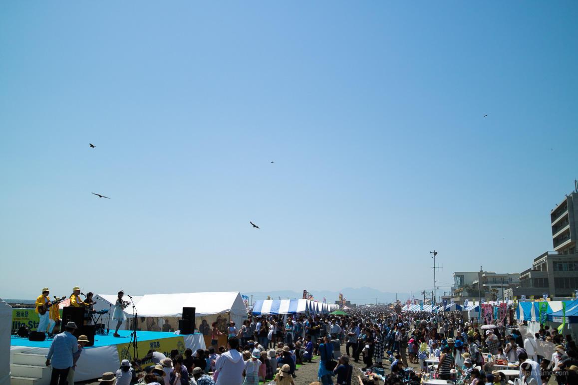 湘南祭、ライブ中の模様