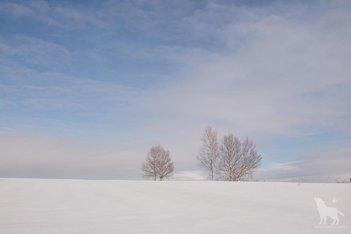 美瑛の丘と青空