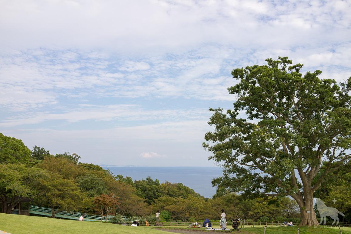 吾妻山頂上の芝生広場