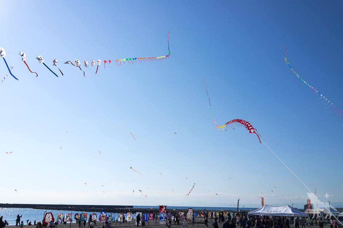 たくさんの凧